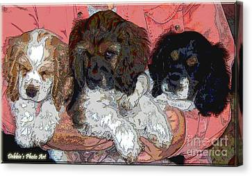 Puppy Love  Sugar         Little Bear And Peanut Canvas Print by Debbie Portwood