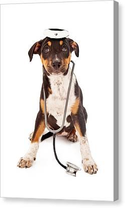 Puppy Veterinarian Canvas Print by Susan  Schmitz