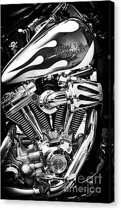 Pure Harley Chrome Canvas Print by Tim Gainey