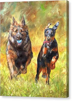 Pure Joy Canvas Print by David Stribbling