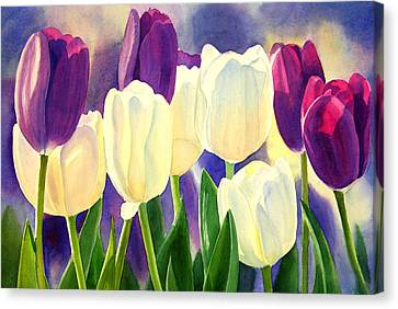 Purple And White Tulips Canvas Print by Sharon Freeman