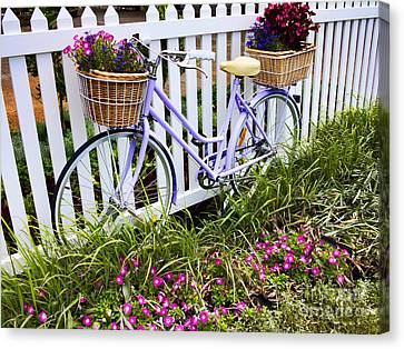 Purple Bicycle And Flowers Canvas Print by David Smith