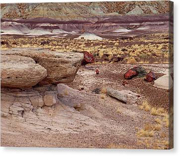 Purple Earth Canvas Print by James Peterson