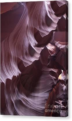 Purple Folds Canvas Print by Brenda Kean
