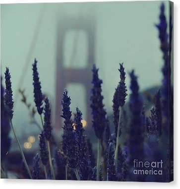 Purple Haze Daze Canvas Print by Jennifer Ramirez
