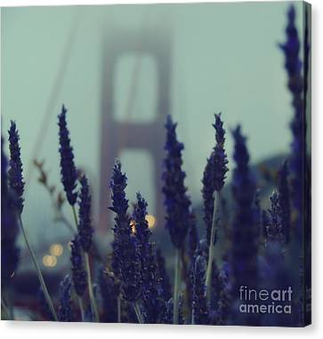 Purple Haze Daze Canvas Print by Jennifer Ramirez