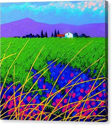 Purple Hills Canvas Print by John  Nolan