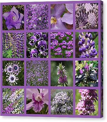 Purple In Nature Collage Canvas Print by Carol Groenen