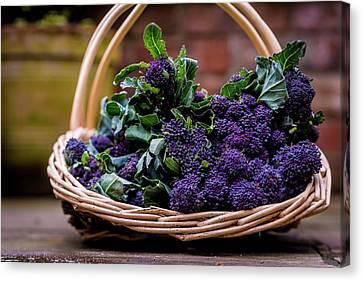 Purple Sprouting Broccoli Canvas Print by Aberration Films Ltd