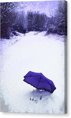 Purple Umbrella Canvas Print by Amanda Elwell