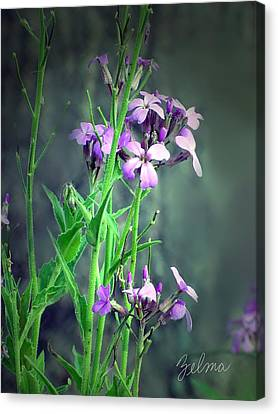 Purple Wildflowers Canvas Print by Zelma Hensel