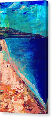 Pv Abstract Canvas Print by Jamie Frier