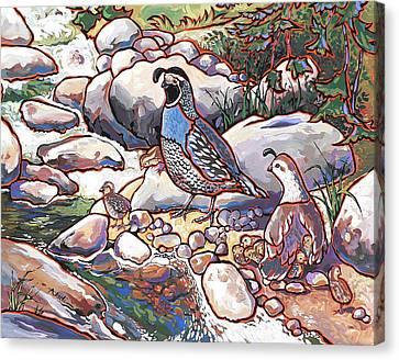 Quail Family Canvas Print by Nadi Spencer