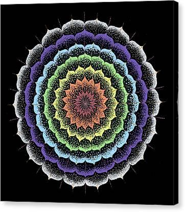 Quan Yin's Healing Canvas Print by Keiko Katsuta