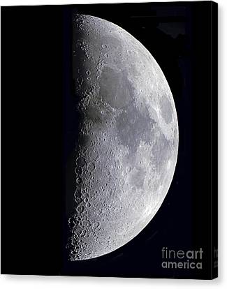 Quarter Moon Canvas Print by Alan Dyer