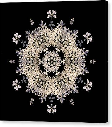 Queen Anne's Lace Flower Mandala Canvas Print by David J Bookbinder
