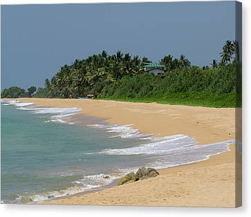 Quiet Beach Along A2 Road, Bentota Canvas Print by Panoramic Images