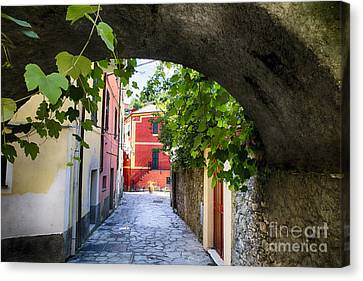 Quiet Street In Monterosso Canvas Print by George Oze