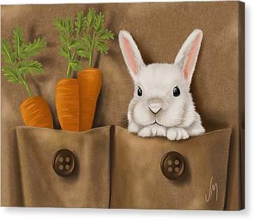 Rabbit Hole Canvas Print by Veronica Minozzi
