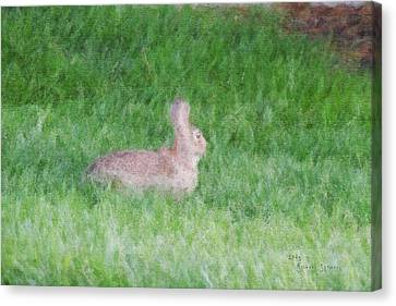 Rabbit In The Grass Canvas Print by Michael Stowers