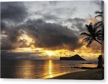 Rabbit Island Sunrise - Oahu Hawaii Canvas Print by Brian Harig