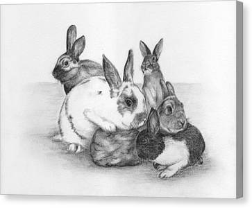 Rabbits Rabbits And More Rabbits Canvas Print by Nan Wright
