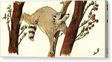 Raccoon On Tree Canvas Print by Juan  Bosco