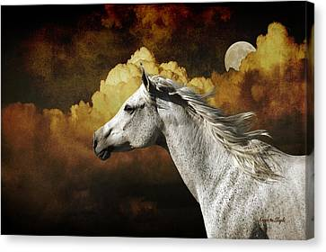 Racing The Moon Canvas Print by Karen Slagle