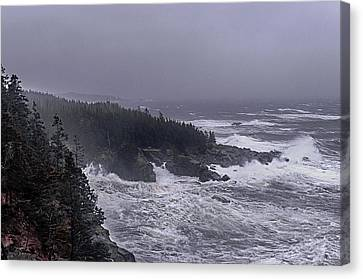 Raging Fury At Quoddy Canvas Print by Marty Saccone