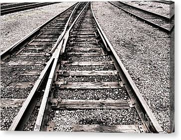 Railroad Switch Canvas Print by Olivier Le Queinec
