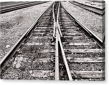 Railroad Tracks Canvas Print by Olivier Le Queinec