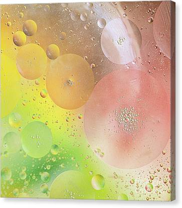 Bubbles Canvas Print by Ivy Ho