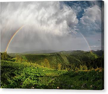 Rainbow Light And Form Canvas Print by Leland D Howard