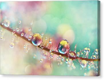 Rainbow Smoke Drops Canvas Print by Sharon Johnstone