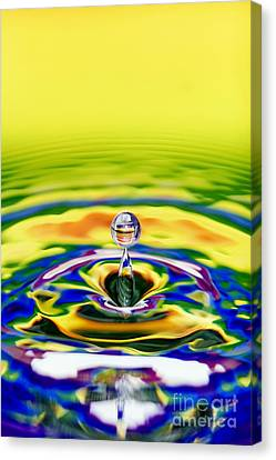 Rainbow Water Drop Canvas Print by Tim Gainey