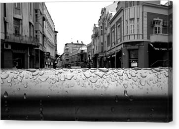 Raindrops Canvas Print by Lucy D