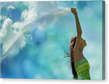 Rainmaker Canvas Print by Laura Fasulo
