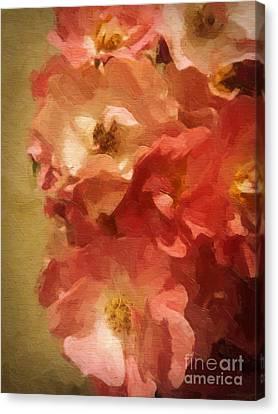 Ramblin Rose Memories Canvas Print by Lianne Schneider