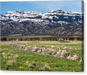 Ranching In Modoc Canvas Print by Kathleen Bishop