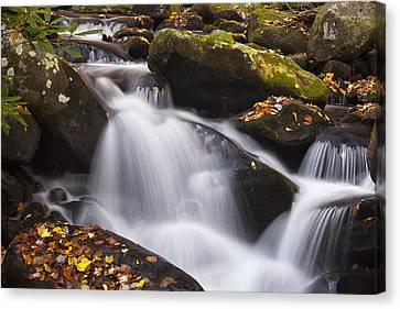 Rapids At Autumn Canvas Print by Andrew Soundarajan