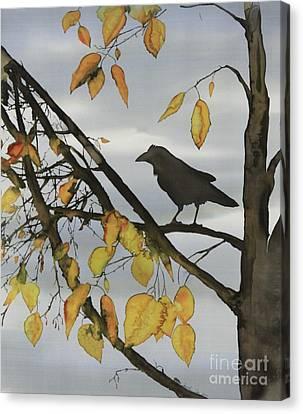 Raven In Birch Canvas Print by Carolyn Doe
