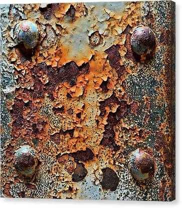 Raw-extract Canvas Print by Tom Druin