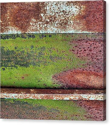 Raw Steel...squared Canvas Print by Tom Druin