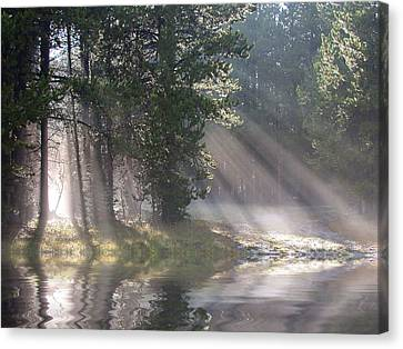 Rays Of Light Canvas Print by Shane Bechler