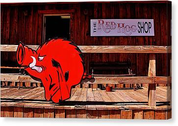 Razorback Country Canvas Print by Benjamin Yeager
