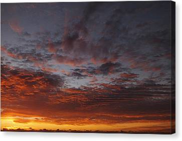 Reach For The Sky 11 Canvas Print by Mike McGlothlen