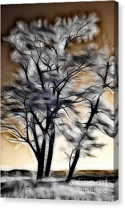 Reach For The Sky IIi - Blue Ridge Parkway Canvas Print by Dan Carmichael