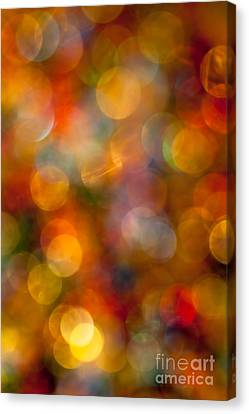 Red And Gold Bokeh Canvas Print by Jan Bickerton