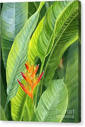 Red And Gold Heliconia Canvas Print by Sharon Freeman