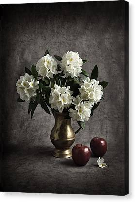Red Apples And White Rhododendron Canvas Print by Jitka Unverdorben